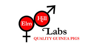 Elm Hill Labs