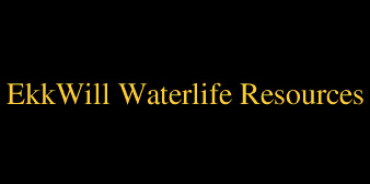 Ekkwill Waterlife Resources