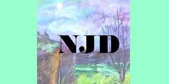 Nina J. Design Studios LLC
