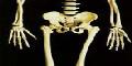 Bone Density & Quality, it's a piece of cake