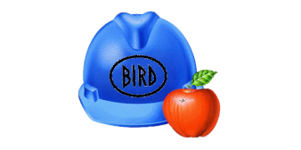 Bird Construction Co Inc