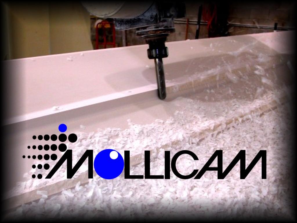 Mollicam, Inc.