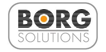 BorgSolutions, Inc.