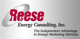 Reese Energy Consulting