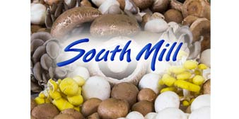South Mill Mushroom Sales