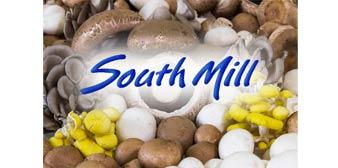 South Mill Mushroom Sales