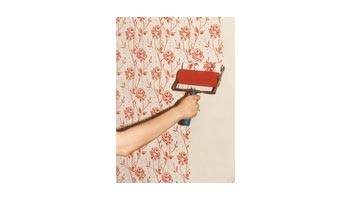 RollerWall--Looks Like Wallpaper w/o Paper