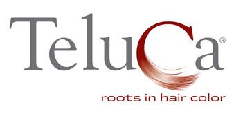 Teluca Inc.