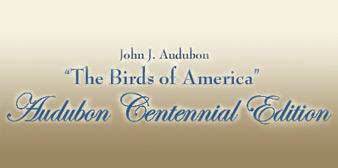 Audubon Arts