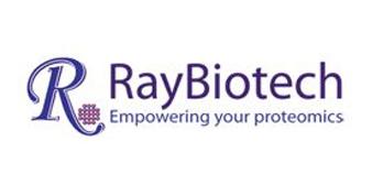 RayBiotech, Inc.