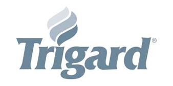 Trigard Engraved Bronze