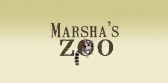 Marsha's Petting Zoo