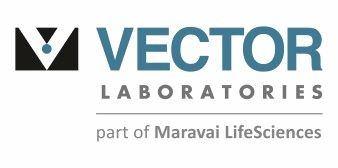 Vector Laboratories, Inc.