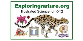 Exploring Nature Educational Resource