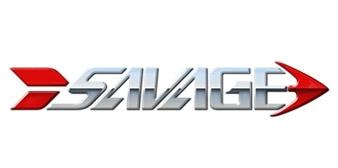 Savage Engineering Inc.