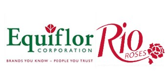 Equiflor - Rio Roses