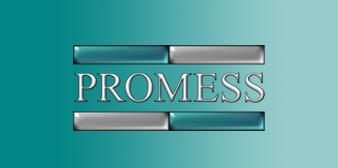 Promess Inc