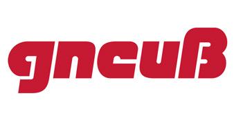 Gneuss, Inc.