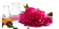 The Chemistry of Cosmetics