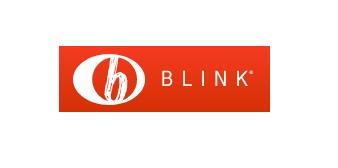 Blink YA Books